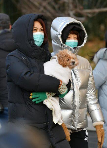 China renews orange alert for cold wave