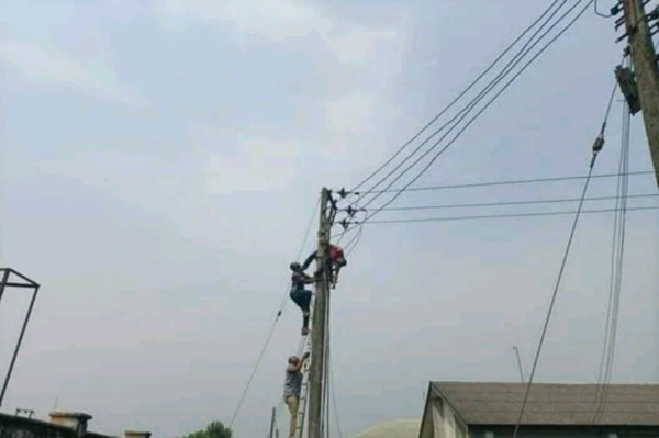 UNIUYO staff electrocuted while reconnecting vandalized armored cable photos