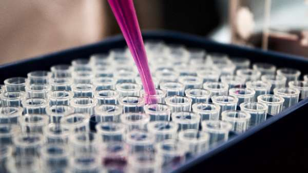 Global scarcity of COVID 19 vaccines may threatened second dose says Fed Govt