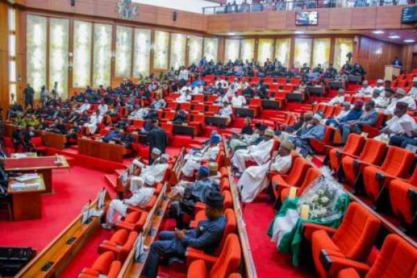 Senate moves to cut cement prices
