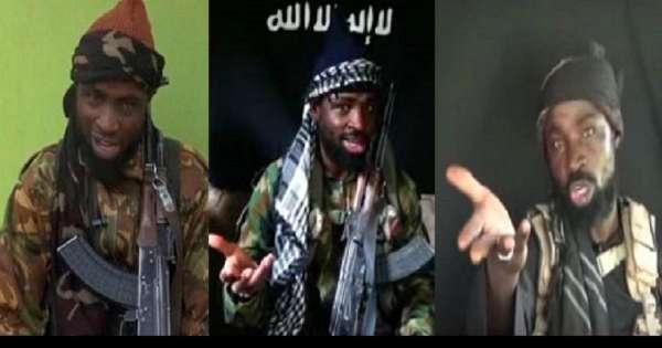 ISIS ordered us to kill Boko Harams leader – ISWAP confirms Shekaus death