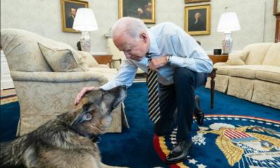 US President Biden announces death of family dog Champ