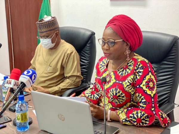 Nigerians In Diaspora Commission Launches Data Mapping Portal
