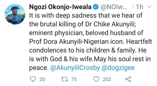 Dr. Akunyilis son reacts as Okonjo Iweala comments